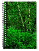 A Place In The Forest Spiral Notebook