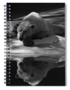 A Polar Bear Reflects Spiral Notebook