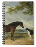 A Pony With A Dog Spiral Notebook