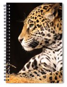 A Portrait Spiral Notebook