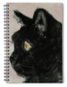 A Purrfect Vision Spiral Notebook