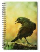 A Ravens Poise Spiral Notebook