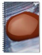 A Red Blot Spiral Notebook