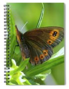 A Red Butterfly Perching  Spiral Notebook