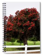 A Red Pin Under A Red Tree At Morro Bay Golf Course Spiral Notebook