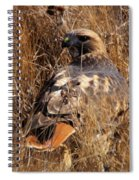 A Red Tailed Hawk  Spiral Notebook