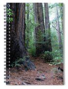 A Redwood Trail Spiral Notebook