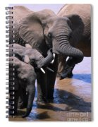 A Refreshing Moment Spiral Notebook