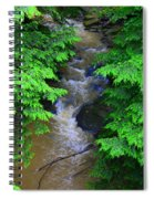 A River Runs Through It Spiral Notebook
