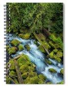 A River's Path Spiral Notebook