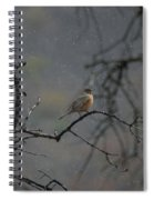 A Robin In Spring Snowfall  Spiral Notebook