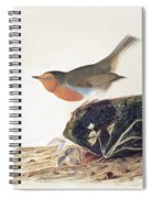 A Robin Perched On A Mossy Stone Spiral Notebook