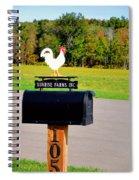 A Rooster Above A Mailbox 3 Spiral Notebook