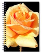 A Rose By Any Other Name Would Smell As Sweet Spiral Notebook