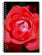 A Rose Spiral Notebook