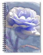 A Rose In Pastel Blue Spiral Notebook