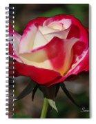 A Rose Is A Rose II Spiral Notebook