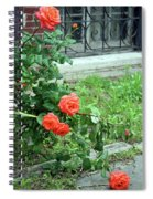 A Rose Is Down Spiral Notebook