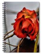 A Rose On Bamboo Spiral Notebook
