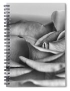 A Roses Solitude Spiral Notebook