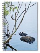 A Rough Patch Spiral Notebook