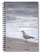 A Seagull At The Beach Spiral Notebook