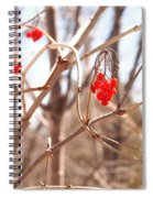 A Sign Of Spring Spiral Notebook