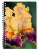 A Single Tear Spiral Notebook