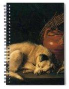 A Sleeping Dog With Terracotta Pot 1650 Spiral Notebook