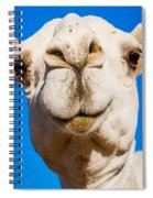 A Smiling Camel Spiral Notebook