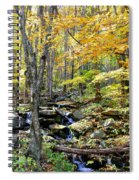 A Smokey Mountain Stream  Spiral Notebook
