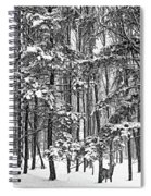 A Snowy Day Bw Spiral Notebook