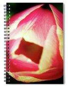 A Soft Tullip  Spiral Notebook