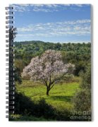 A Solitary Almond Tree Spiral Notebook