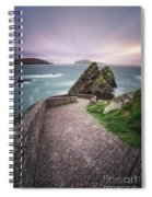 A Song For Ireland Spiral Notebook