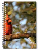 A Spot Of Red In The Trees Spiral Notebook