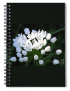 A Spray Of Wild Onions Spiral Notebook