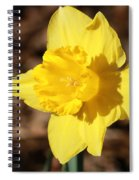 A Spring Blessing Spiral Notebook