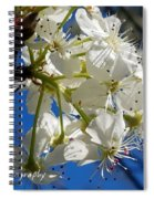 A Spring Delight Spiral Notebook