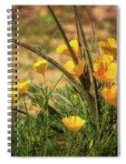 A Spring Morning  Spiral Notebook