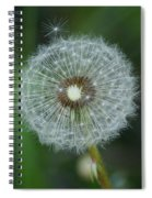 A Star Leaves Home Spiral Notebook