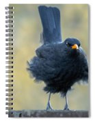 A Stiff Breeze Spiral Notebook