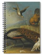A Still Life With A Peacock, Pigeons And Chickens In A River Landscape Spiral Notebook