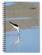 A Stilt Drinking Its Reflection Spiral Notebook