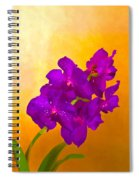 A Study In Orchid Spiral Notebook