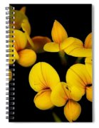 A Study In Yellow Spiral Notebook