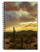 A Summer Evening In The Sonoran  Spiral Notebook