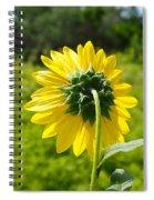 A Sunflower's Backside Spiral Notebook