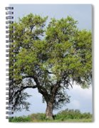 A Tale Of One Tree Spiral Notebook
