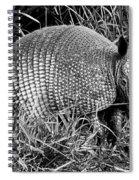 A Texas Critter Spiral Notebook